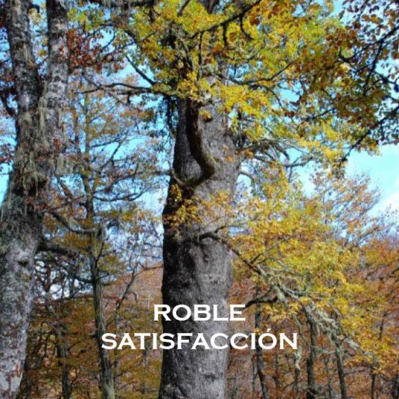 ROBLE-SATISFACCIÓN