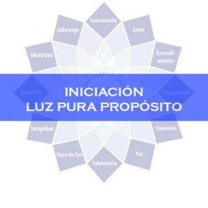 INICIACIÓN A LA LUZ PURA PROPÓSITO