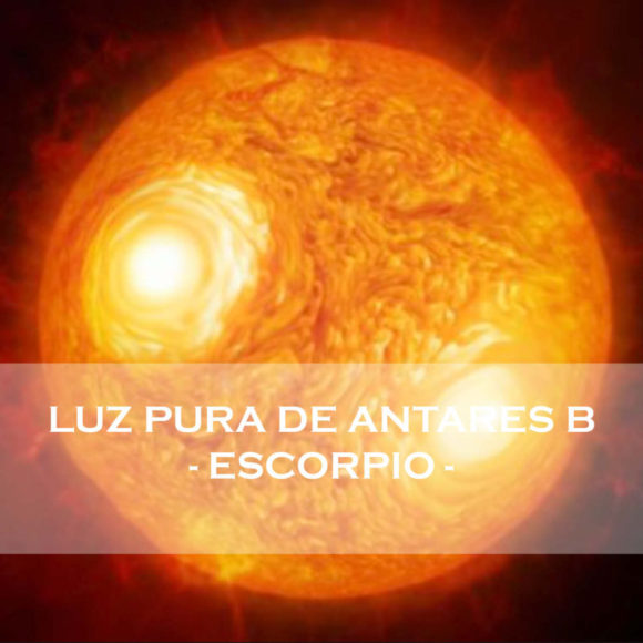 ANTARES B